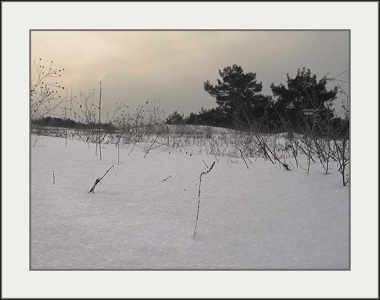 "фото ""последний штрих зимы... II"" метки: пейзаж, природа, зима"