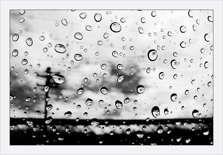 "фото ""rain cell"" метки: макро и крупный план, жанр,"