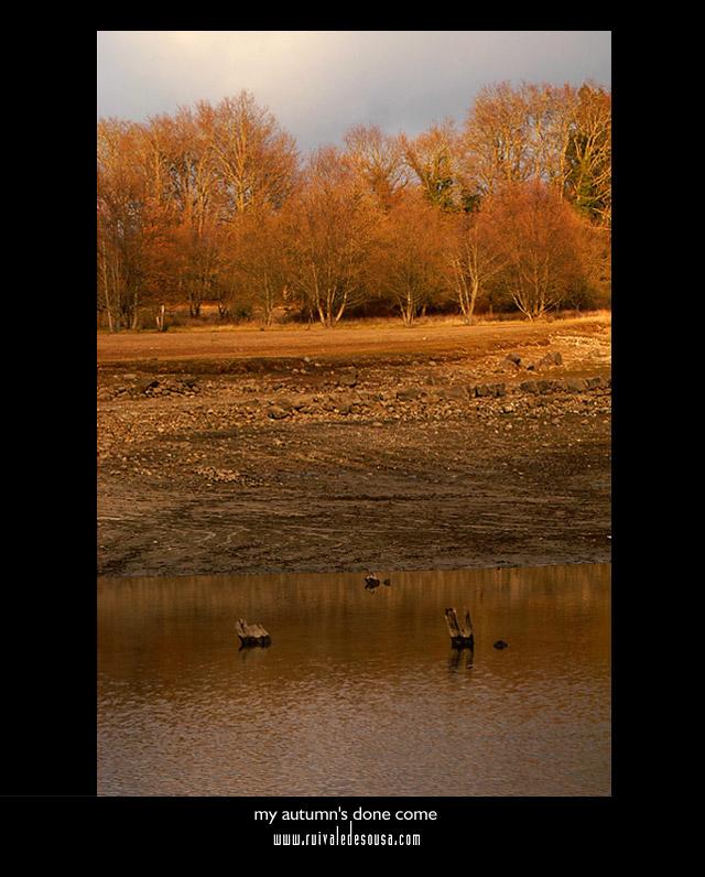 "фото ""my autumn`s done come"" метки: разное,"