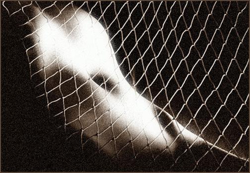 """фото """"сети любви"""" метки: портрет, природа, дикие животные, женщина"""