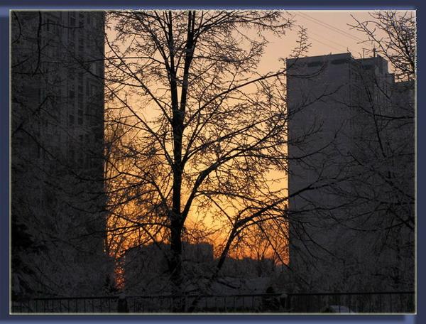 "фото ""Зима...Закат..."" метки: пейзаж, зима"