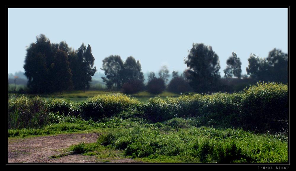 "фото ""++"" метки: пейзаж, весна"
