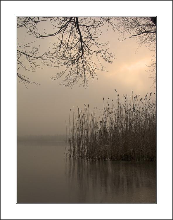 """фото """"камыш  не гнется, не шумит река..."""" метки: пейзаж, природа, вода"""