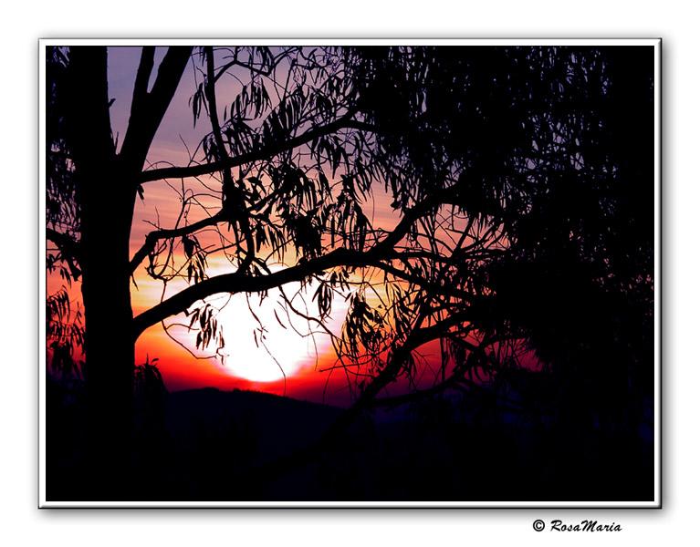 """фото """"Lindoia Sunset #2"""" метки: путешествия, пейзаж, Южная Америка, закат"""