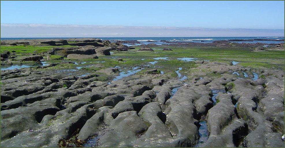 "фото ""to reach the ocean..."" метки: путешествия, пейзаж, Южная Америка"