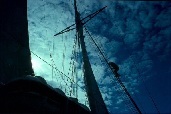"""фото """"Captain Scott"""" метки: репортаж,"""