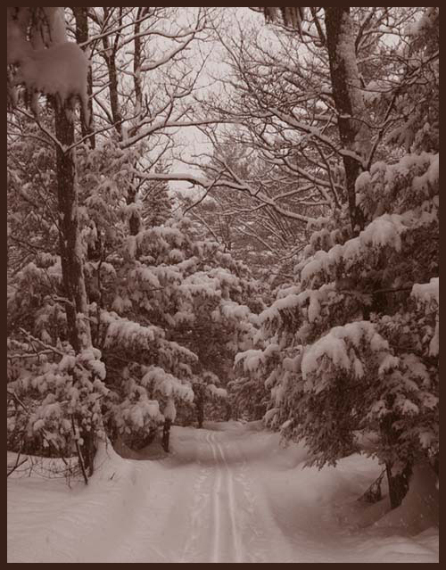 """фото """"***"""" метки: пейзаж, черно-белые, зима"""