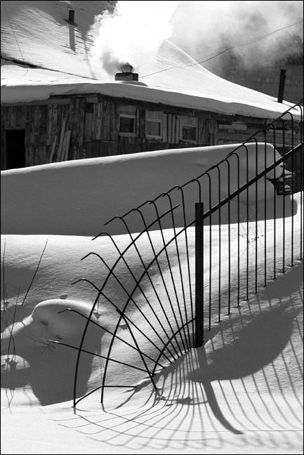 """фото """"IMG_6326"""" метки: черно-белые, пейзаж, зима"""