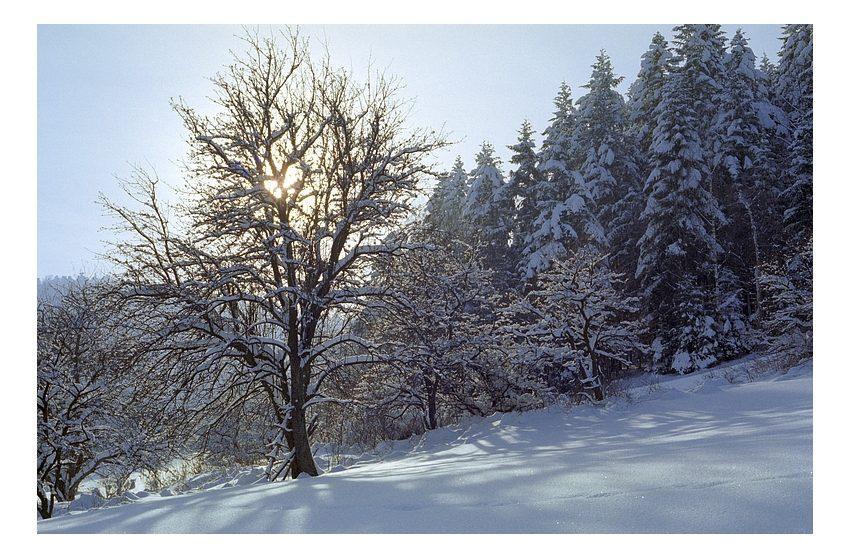 """фото """"golden light"""" метки: пейзаж, горы, зима"""