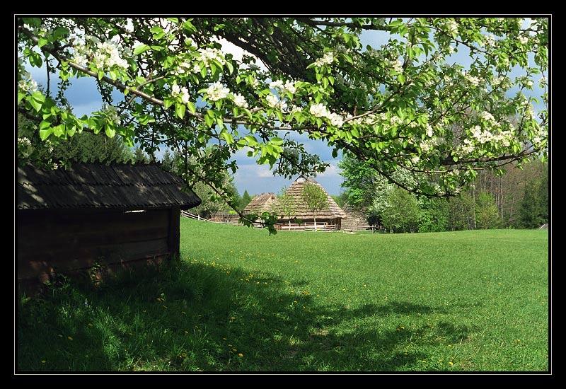 """фото """"Скоро весна"""" метки: пейзаж, весна"""