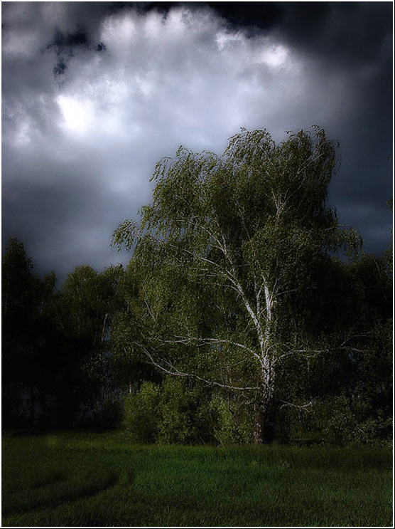 "photo ""Expectation of a thunder-storm ..."" tags: misc.,"