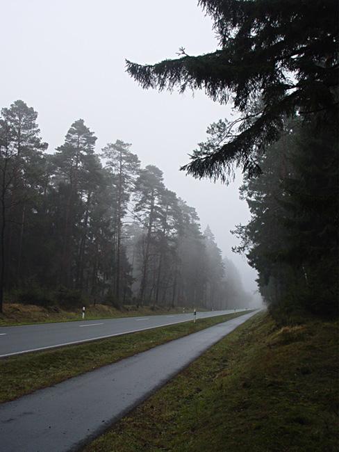 "фото ""этюд с туманом"" метки: пейзаж, лес"