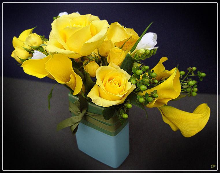 Открытки желтые розы картинки