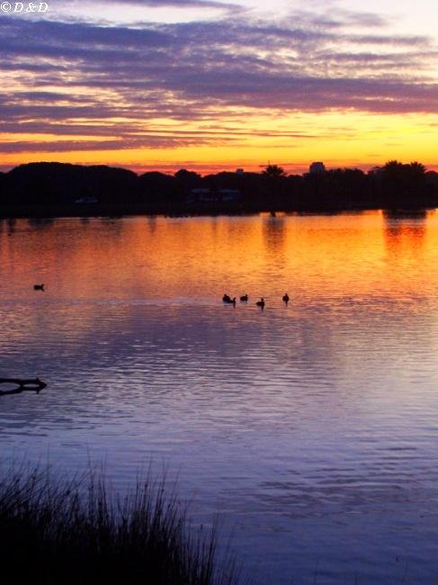 "фото ""Lake at Night"" метки: путешествия, пейзаж, Австралия, вода"