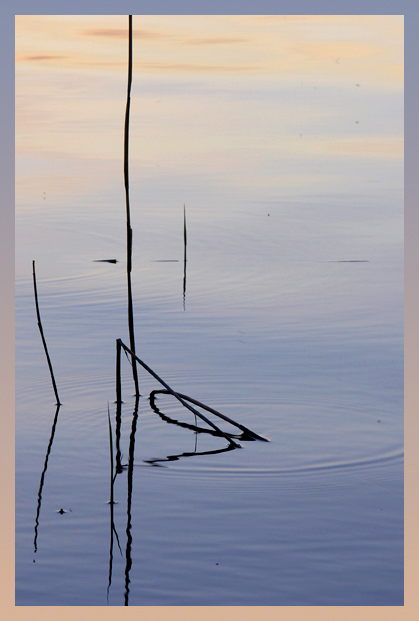 "photo ""Ex libris"" tags: abstract, landscape, water"