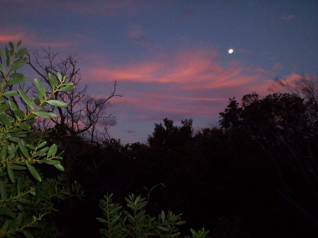 "photo ""Perpendicular moonrise"" tags: landscape, sunset"
