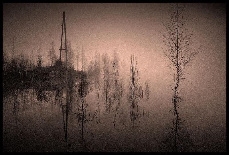 """фото """"ранее утро на озере"""" метки: черно-белые, пейзаж, вода"""