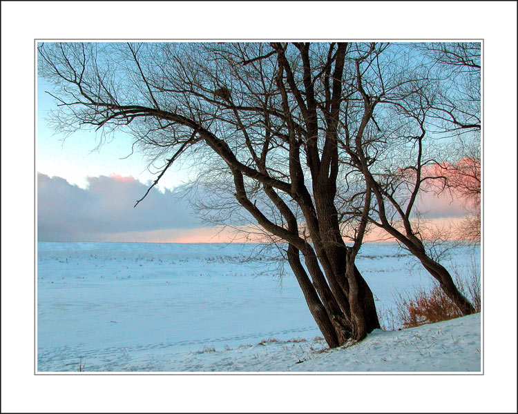 "photo ""Morning in blue tone"" tags: misc., landscape, winter"