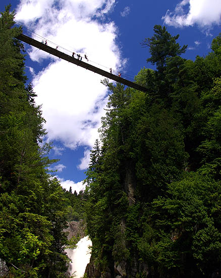 "photo ""Highly Suspended"" tags: landscape, travel, North America, forest"