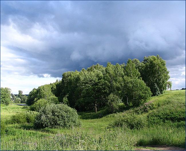"photo ""It seems a rain gathers"" tags: landscape, clouds, forest"