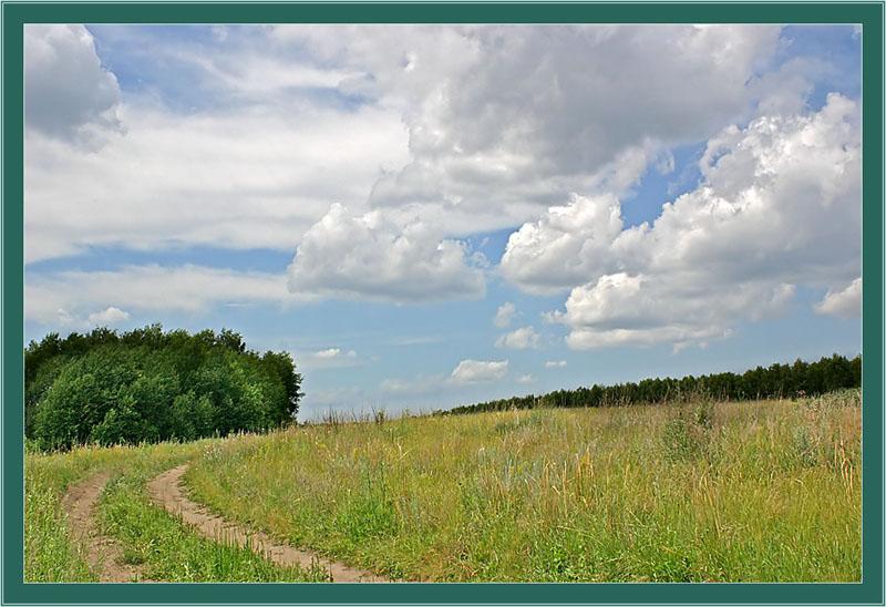 """фото """"Летний пейзаж"""" метки: пейзаж, лес, лето"""