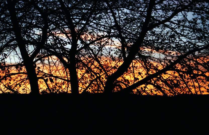"""photo """"Kroz granje nebo"""" tags: landscape, sunset"""