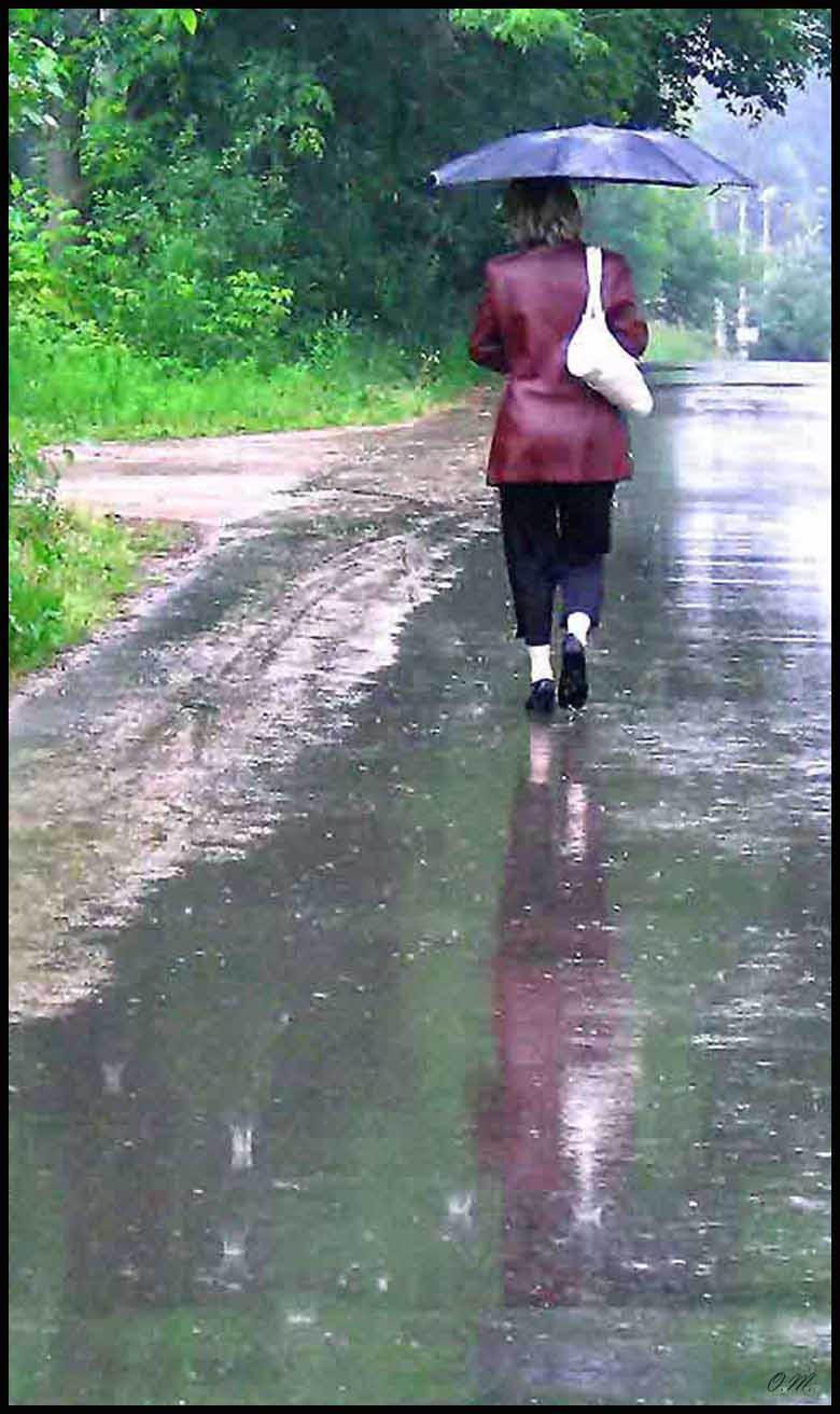 """фото """"Дождь"""" метки: жанр, разное,"""