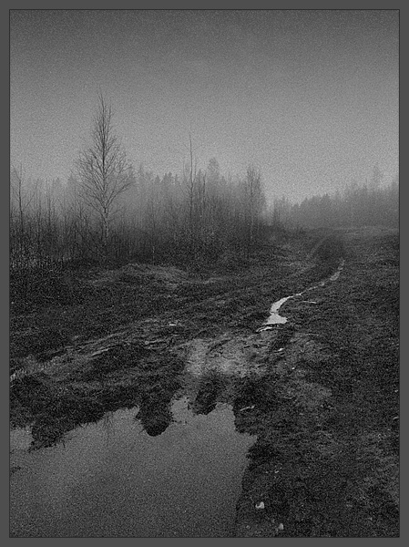 "photo ""rainy morning"" tags: black&white, landscape, spring"