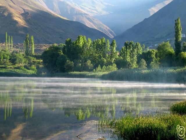 """фото """"Foggy Morning"""" метки: природа, пейзаж, вода, цветы"""