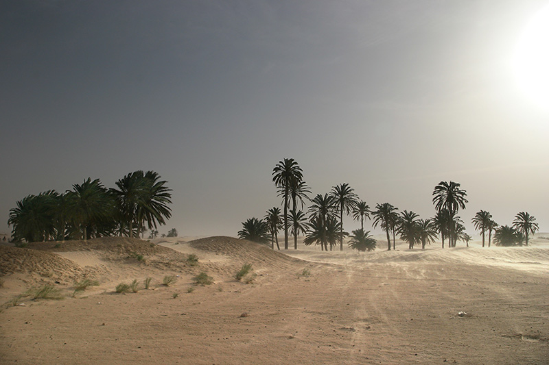 "photo ""Speechless Sahara"" tags: travel, landscape, Africa, summer"
