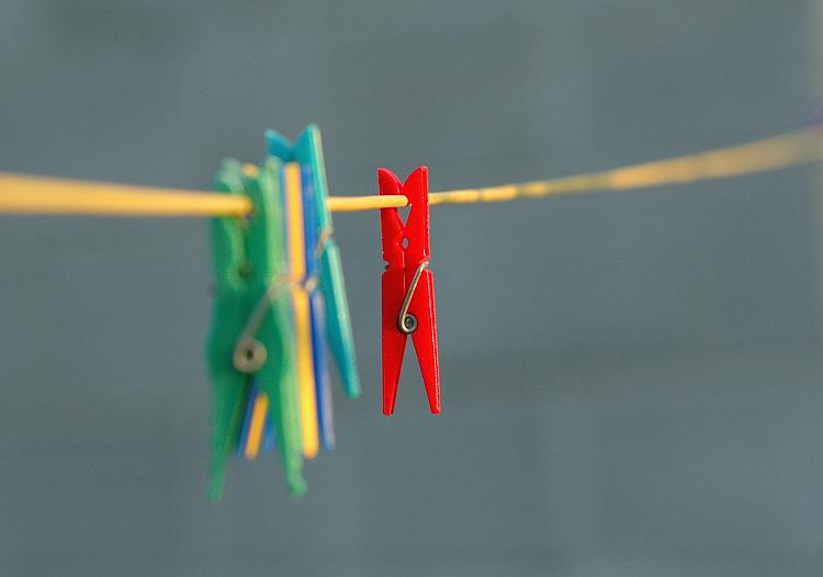 """photo """"><"""" tags: macro and close-up, still life,"""