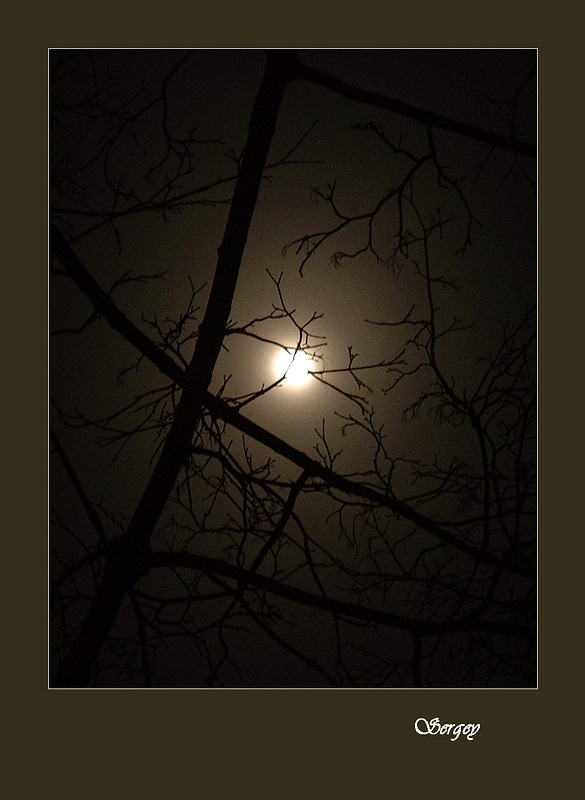 "photo ""Moon"" tags: landscape, autumn, night"