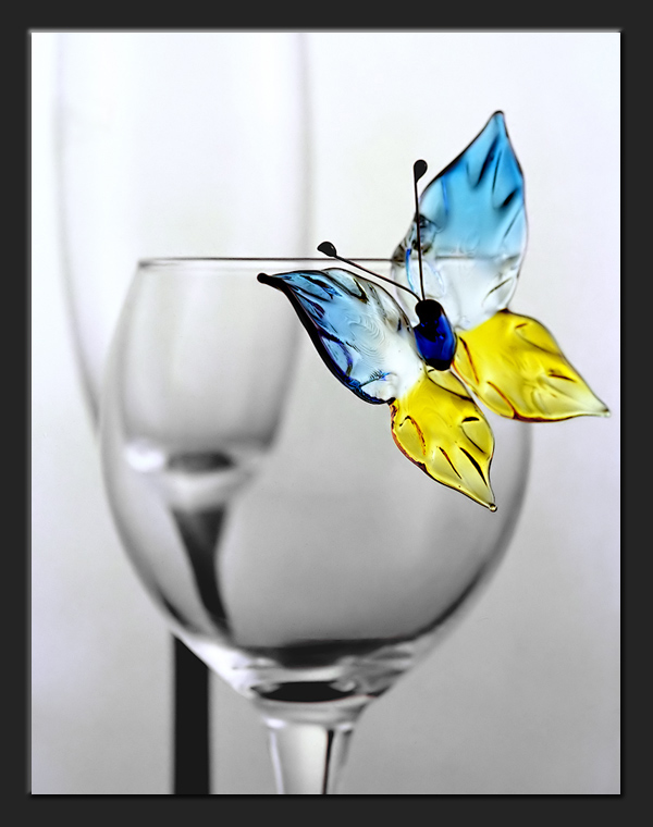 "photo ""Butterfly and glass"" tags: still life, misc.,"