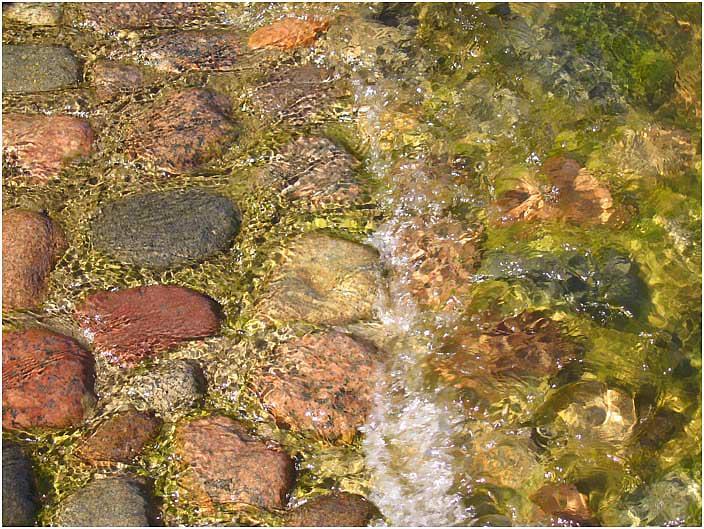 """фото """"Sun Water..."""" метки: природа, макро и крупный план,"""