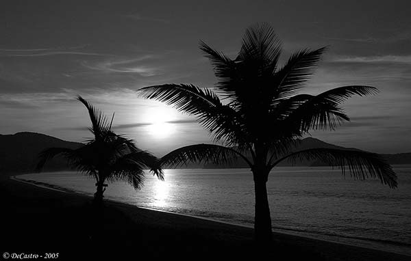 "photo ""Massaguaзu"" tags: black&white,"