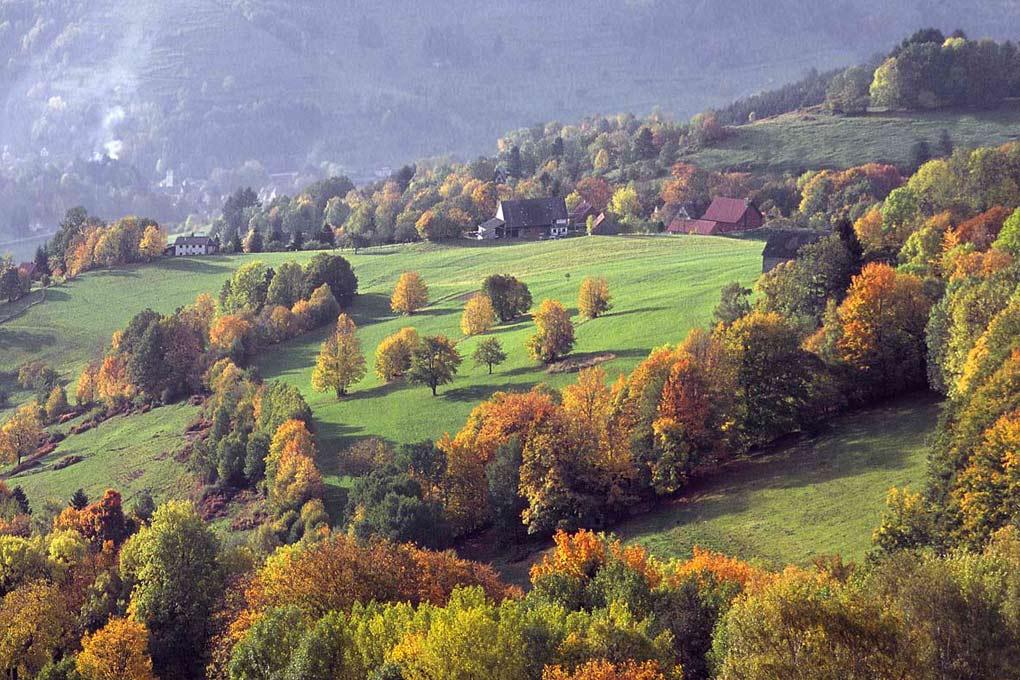 "фото ""Vosges"" метки: пейзаж,"