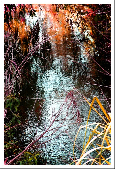 "photo ""Stream"" tags: landscape, spring, water"