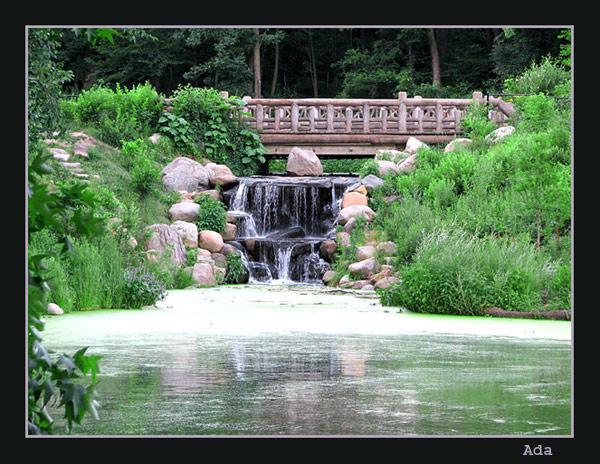 "photo ""Waterfall in the Park"" tags: misc.,"