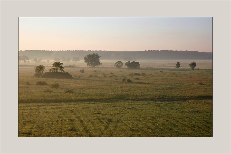 "photo ""morning foggy..."" tags: landscape, summer, sunset"