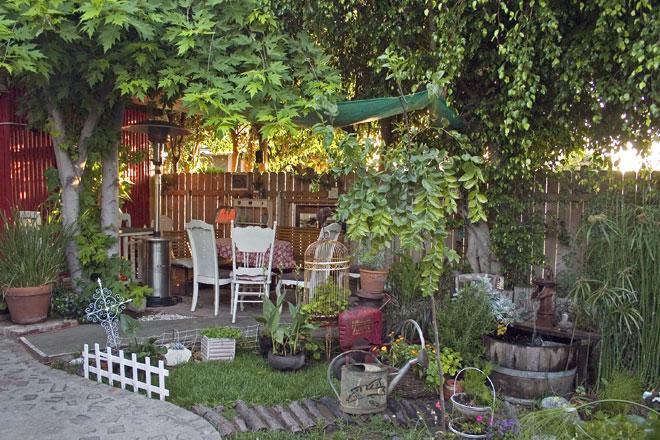 "photo ""Backyard"" tags: misc., nature,"