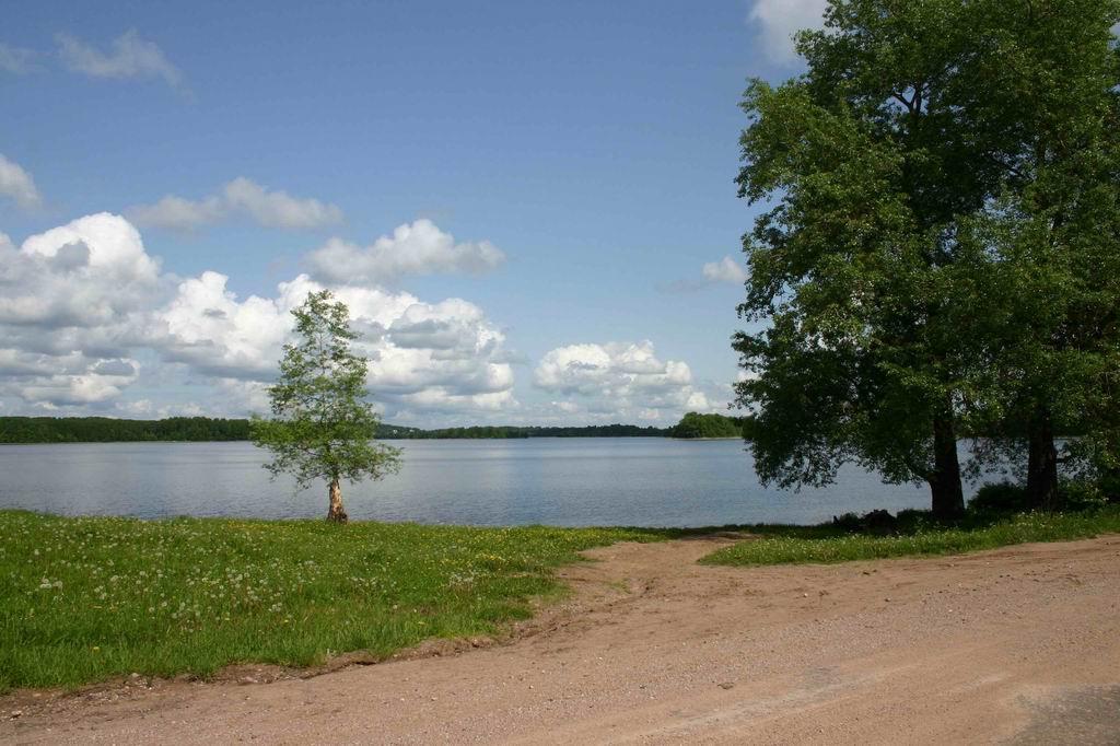 """photo """"Landscape 1"""" tags: misc.,"""