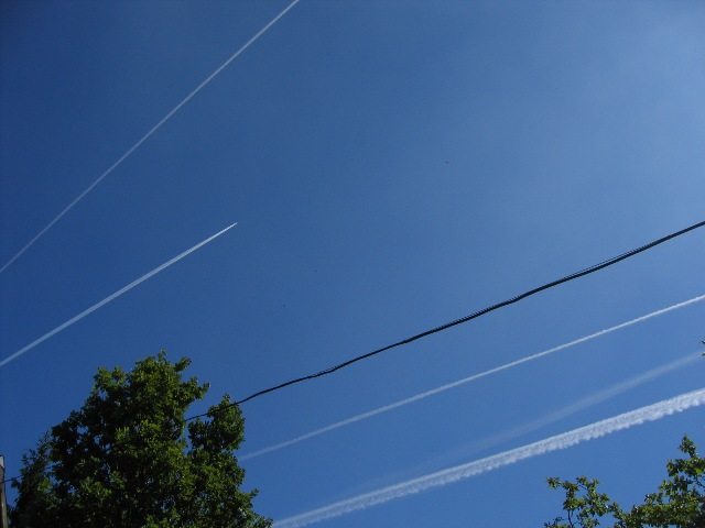 "photo ""Lines"" tags: genre,"