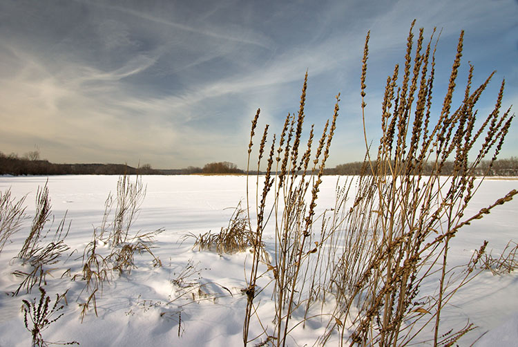 "photo ""Riverbank"" tags: landscape, water, winter"