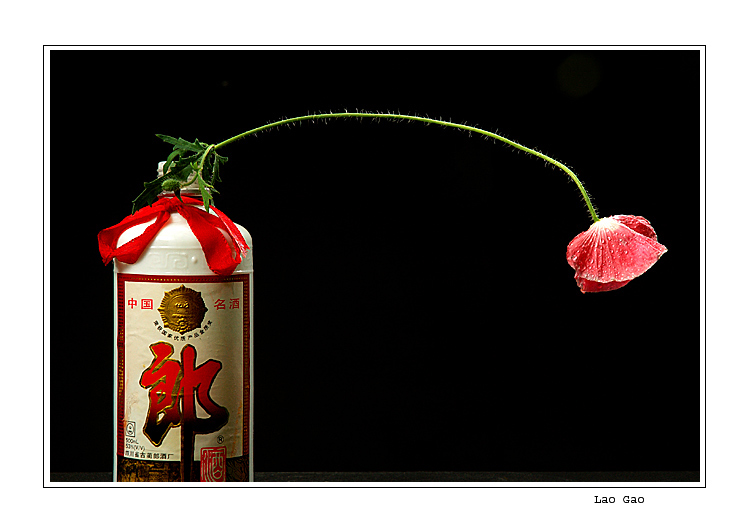 "photo ""Drunk flower"" tags: still life, humor,"