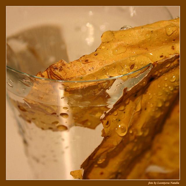 """фото """"Autumn"""" метки: макро и крупный план, натюрморт,"""