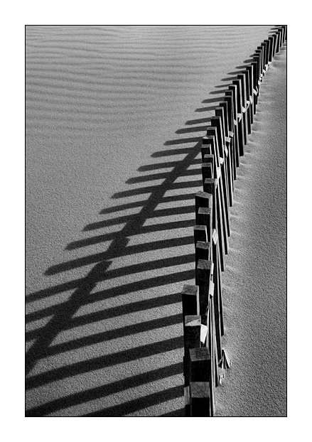 "photo ""Dune fence"" tags: landscape, black&white,"