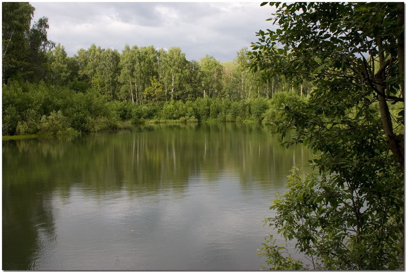 "фото ""Лесное озеро"" метки: пейзаж, вода, лето"