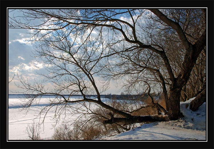 "photo ""Estranging"" tags: misc., landscape, winter"