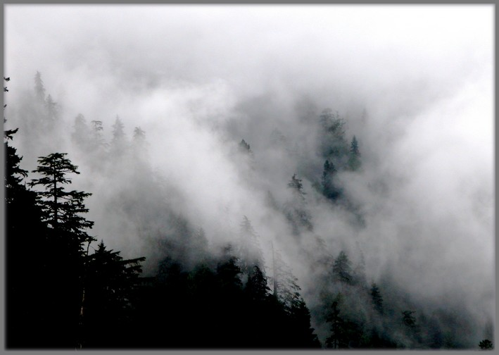 "photo ""Fogs and mists - 07"" tags: travel, landscape, North America, mountains"