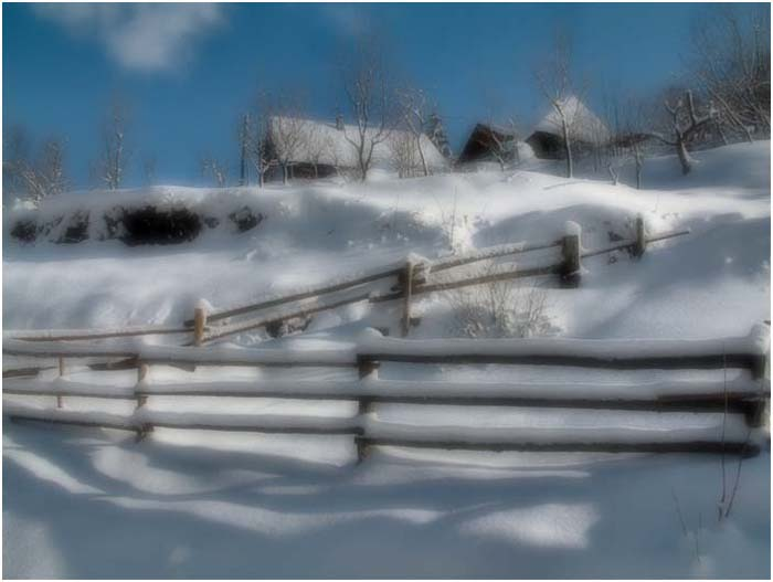 "фото ""Dreams"" метки: природа,"